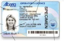 2009 License The Ever Worst Introducing June