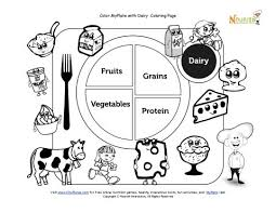 Small Picture Printable My Plate Dairy Coloring Sheet Teaching Kids about My