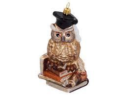 Eule Bücher Lernen Lesen Christbaumschmuck Weihnachten Glas