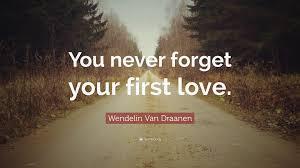 Forget Love Quotes Adorable Wendelin Van Draanen Quotes 48 Wallpapers Quotefancy