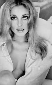 112 best Sharon Tate images on Pinterest
