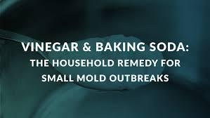 vinegar baking soda the household