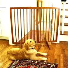 dog friendly area rugs rug best dog friendly area rugs