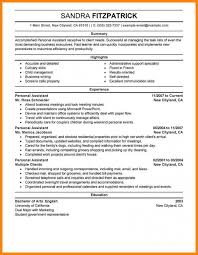Personal Statement Resume Example Resume Personal Statement Job Sample Examples Nursing Cv Example