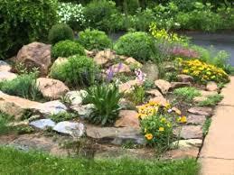 garden ideas small rock garden designs rock yard landscaping rock within rock garden ideas for