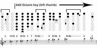 Pin On Band