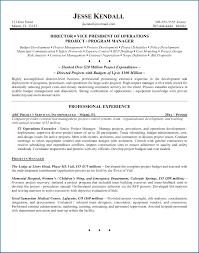 Executive Resume Template Word Template Executive Resume Template 44