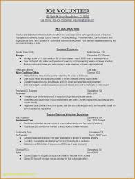 Resume Print Out Marvelous Free Resume Editor New Doing A Resume