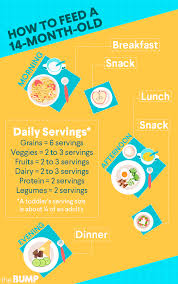 21 Month Old Baby Diet Chart 14 Month Old 14 Month Milestones Baby Month By Month 14