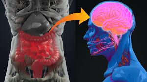 Parkinson's disease 'may' start in gut - BBC News