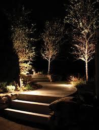 uplit trees jpg 650 853