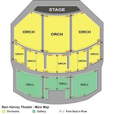 Brooklyn Academy Of Music Seating Chart Bam Harvey Theater Seating Chart Theatre In New York