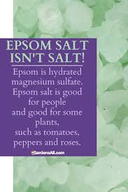 epsom salt is actually mineral deposits found in the water in epsom england the