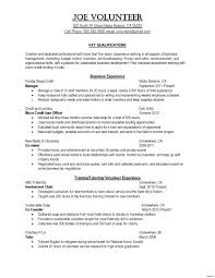 Skill Based Resume Template Word Best Artist Awesome Skills Examples