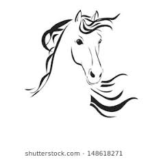 horse head drawing. Delighful Head Line Drawing Of A Horseu0027s Head On White Background Inside Horse Head Drawing