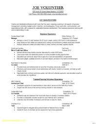 Resume Profile Header Examples Resume Resume Header Examples