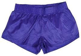 Purple Shiny Short Nylon Shorts By Soffe Size Xl 18 95