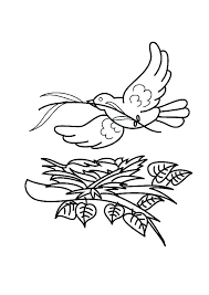 Flying Bird Coloring Pages At Getdrawingscom Free For Personal