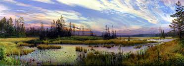 oil painting landscapes marshes painting oil nature landscape sky beautyful