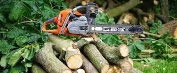 while a tree with huge canopy may look impressive regular trimming is necessary to ensure safety for instance the branches might get caught in cutting prices m64