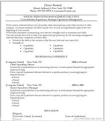 Microsoft Word Resume Template 2010 Resume Example