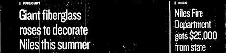 Nues Herald-Spectator - PDF Free Download