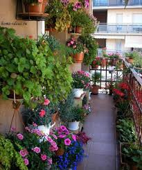Small Picture Balcony Garden Design Markcastroco
