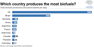 Biodiesel Production Chart These Countries Produce The Most Biofuels World Economic Forum