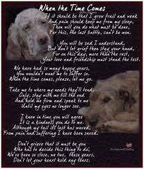 Dog Passing Quotes Magnificent Dog Passing Quotes 48 Best In Memory Of Losing Your Pets They Are