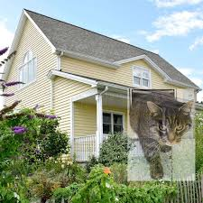 Garten Katzensicher Machen Inspirierend 36 Neu Katzennetz Garten