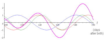 Free Daily Biorhythm Charts Biorhythm Graphs