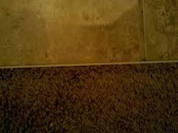 carpet to tile transition strip tile to carpet transition inspirational divider between carpet and tile tile carpet to tile transition strip