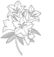 カテゴリー 植物と花のぬり絵 ぬり絵リラックス無料ぬり絵と世界の