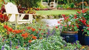 color garden. Color Garden A