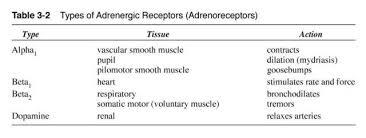 Adrenergic Receptors Chart Rt 127