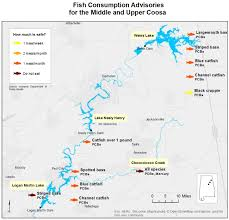 coosa river map new coosa river maps give you a new perspective