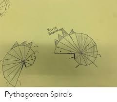 Youre Brethnking 16 Pythagorean Spirals Pythagorean Meme
