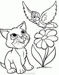 Tô màu hình con mèo dễ thương cho bé ✔️Cẩm Nang Tiếng Anh ✔️