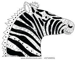 zebra coloring book head for s vector ilration anti stress sheets kids pdf