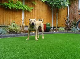 artificial grass las vegas. Prices Of Our Artificial Turf. Las Vegas 20mm Pile Grass