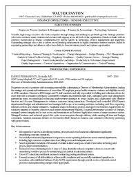 Financial Manager Resume Sample Financial Cv Template Finance