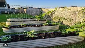 raised vegetable garden beds arreh