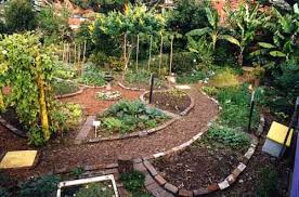 Small Picture Custom Services Home Organic Gardening Service