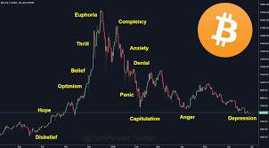 Wall Street Market Cycle Chart The Bullish Case For Bitcoin Whale Reports Bitcoin