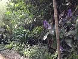 Small Picture Subtropical Sydney Oasis Janna Schreier Garden Design