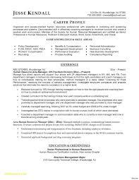 Dance Resume For Modern Resume Templates Free Download For Microsoft Word Modern Resume