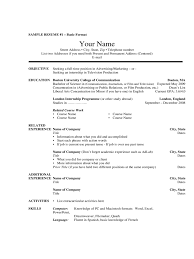 2017 Basic Resume Template Fillable Printable Pdf Forms