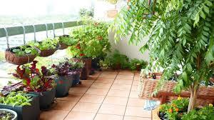 balcony garden. Latest Charming Balcony Garden Designs Ideas | Small Terrace Design A