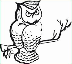 Coloring Book Pages To Print Admirable Free Printable Owl Coloring