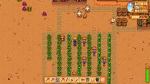 u0027Stardew Valleyu0027 Beginneru0027s Guide Crop Suggestions And Other Tips For Your  First Year On The Farm  PlayerOne